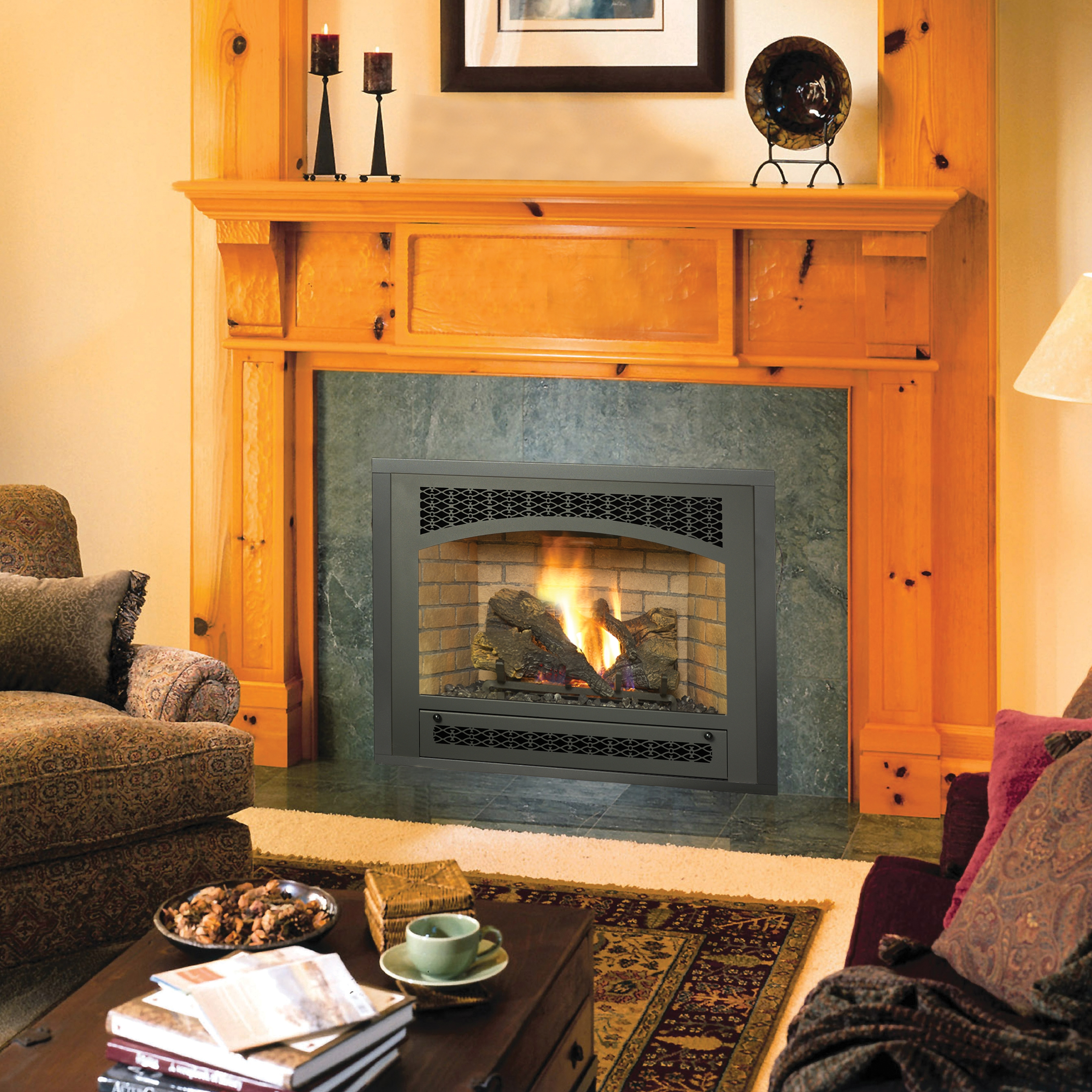 Seattle space saver rochester fireplace for Fireplace inserts seattle