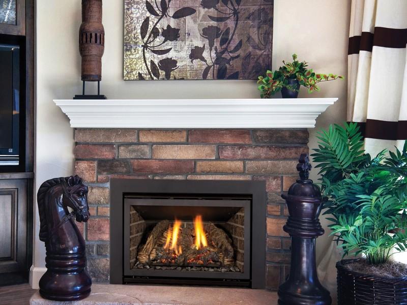 Chaska 25 Rochester Fireplace