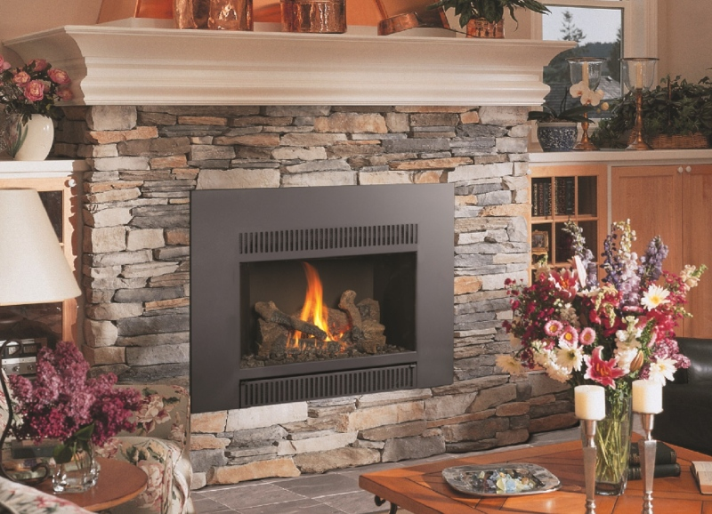Avalon 34 DVL Gas Insert Rochester Fireplace Inc