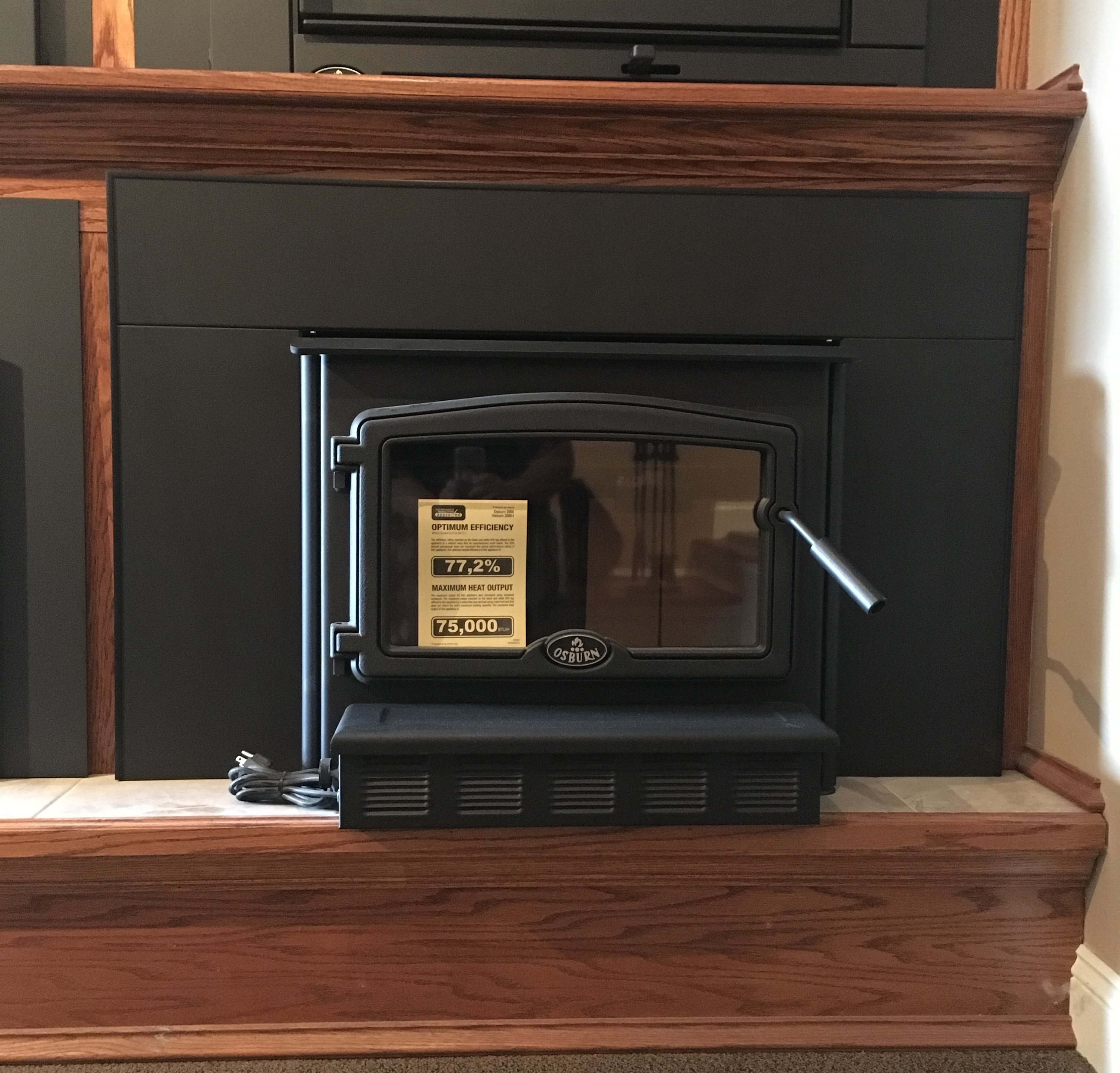 This is an image of a wood insert by Osburn