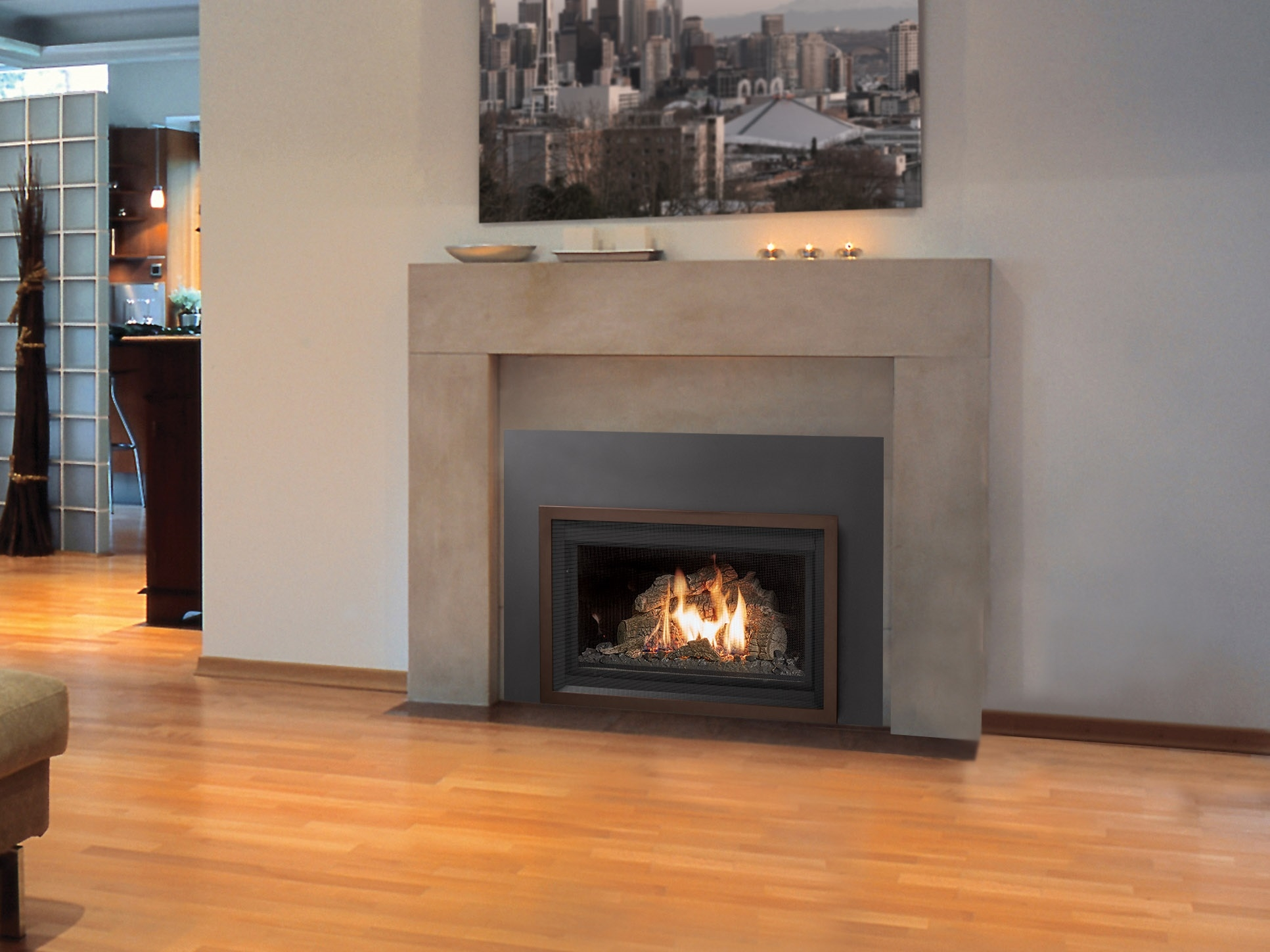 Miraculous 32 Dvs Rochester Fireplace Download Free Architecture Designs Grimeyleaguecom